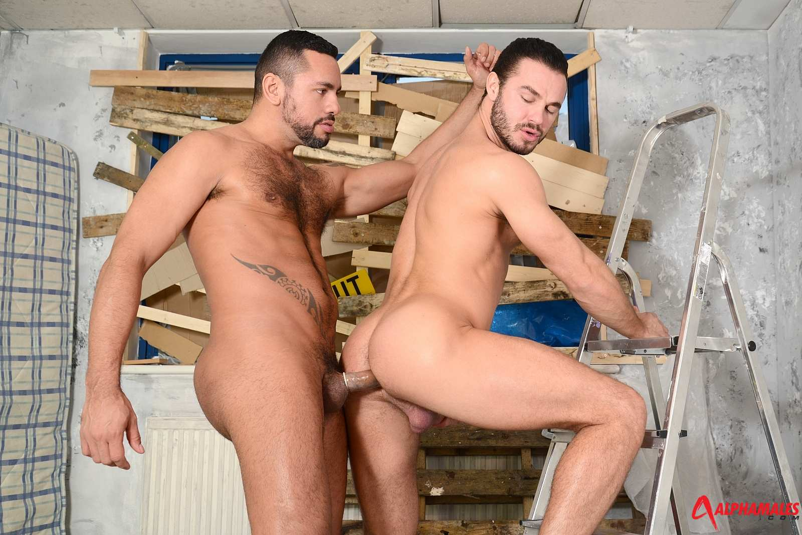 AlphaMales-Jessy-Ares-and-Tiko-Masculine-Men-Fucking-Amateur-Gay-Porn-07 Amateur Masculine Blue Collar Muscle Hairy Men Fucking