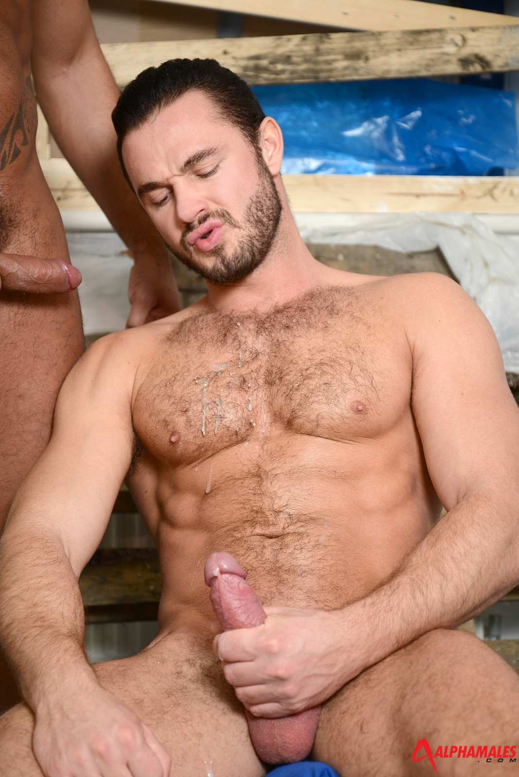 AlphaMales-Jessy-Ares-and-Tiko-Masculine-Men-Fucking-Amateur-Gay-Porn-10 Amateur Masculine Blue Collar Muscle Hairy Men Fucking